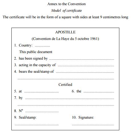 Artigo-Convenção de Haia